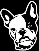 Indianapolis Marketing Agency - Web Design